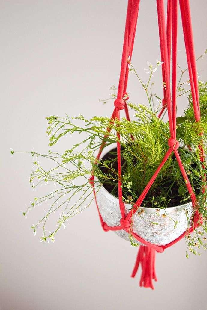 hangende planten woontrendz. Black Bedroom Furniture Sets. Home Design Ideas