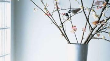 Paasdecoratie vogels en takken