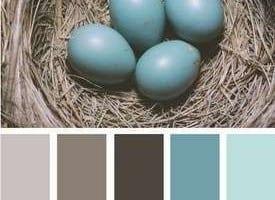 Kleurinspiratie Pasen