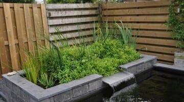 Tips voor een onderhoudsvriendelijke tuin