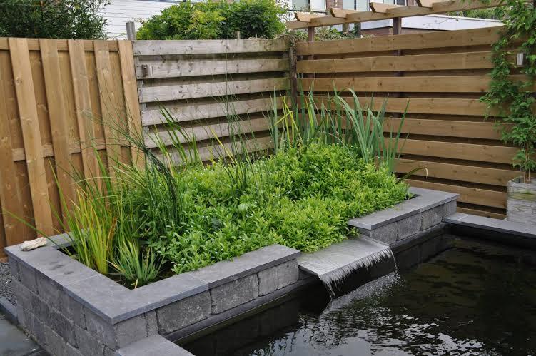 Onderhoudsvriendelijke tuin 5 eenvoudige tips for Tuin aanleggen tips