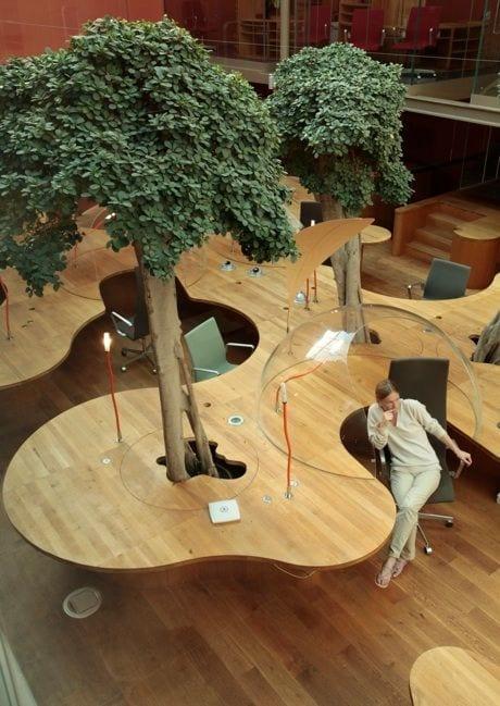 Bomen op kantoor