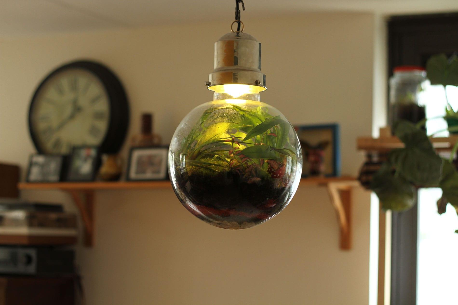 Lamp met groen