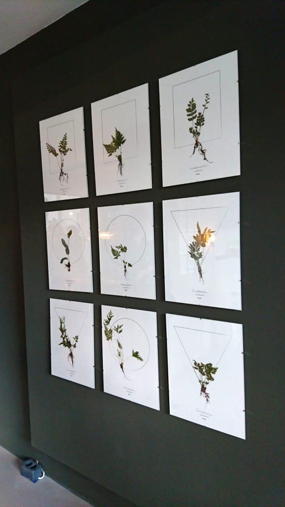 vtwonen beurs botanische prints