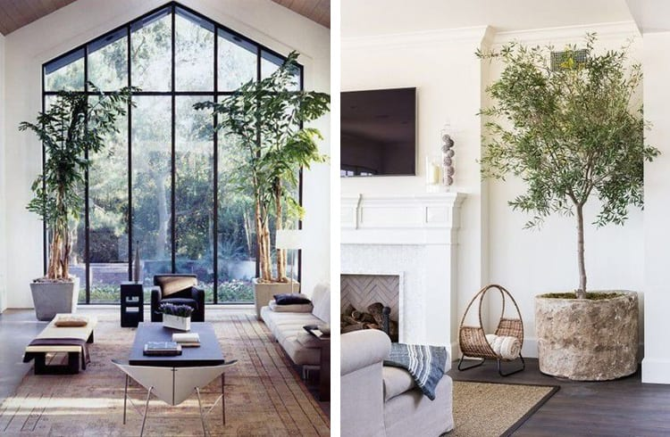 Warme woonkamer met planten