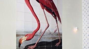 De leukste flamingo accessoires