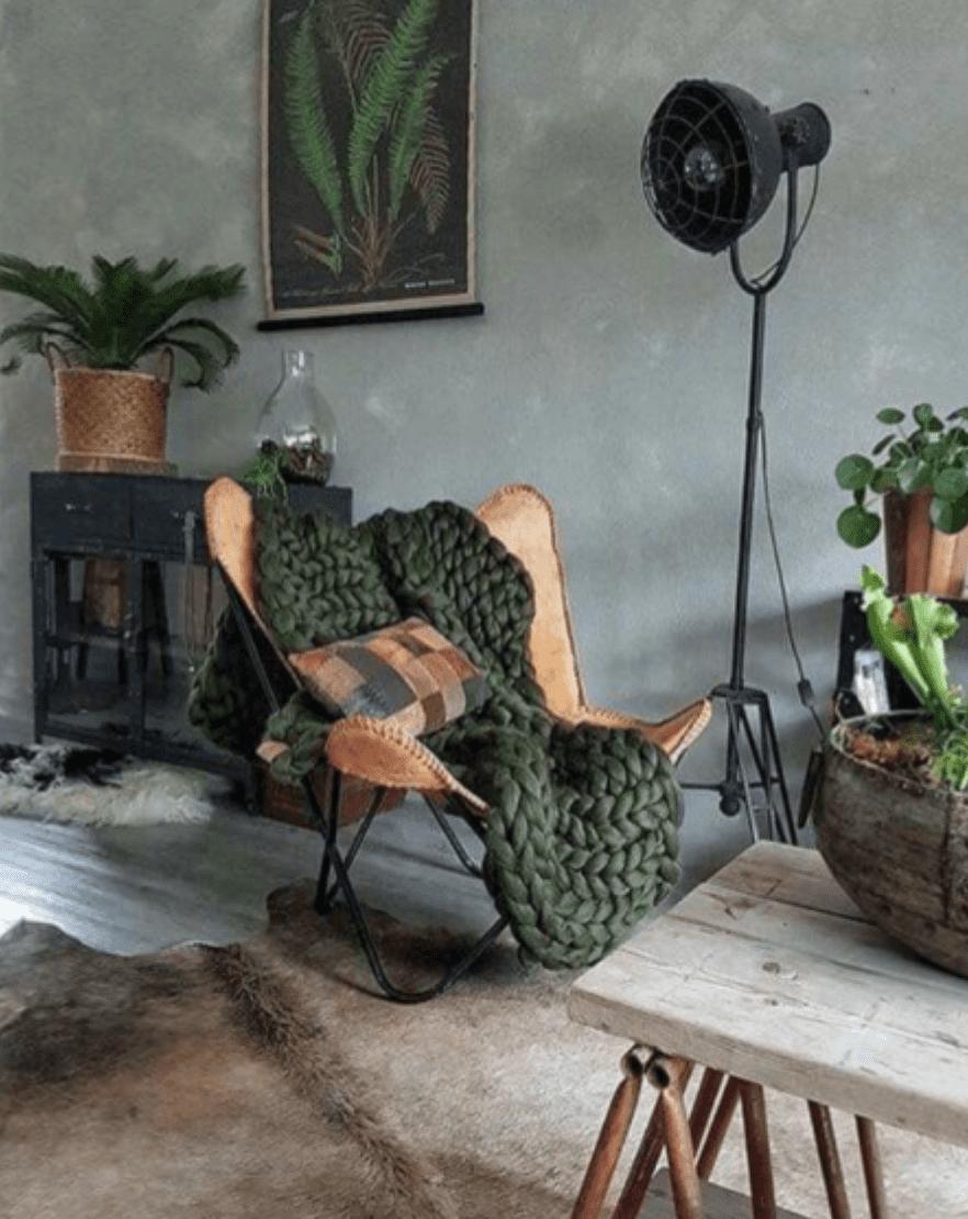 Pannenkoekplant in industrieel interieur