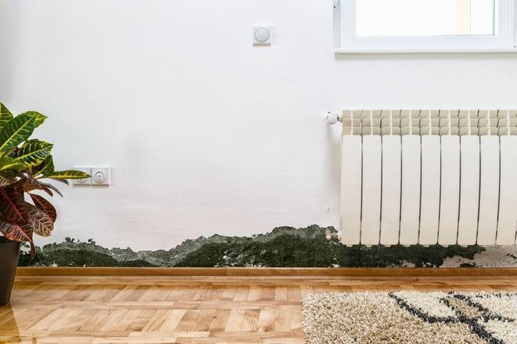 Schimmel op de muur in de woonkamer