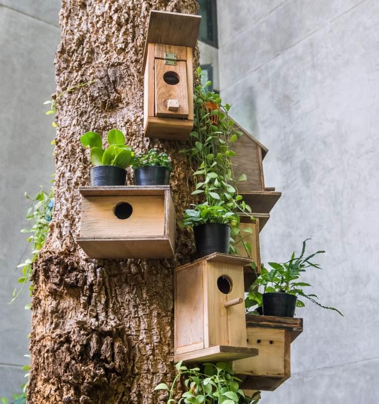 Vogelhuisjes aan een boom