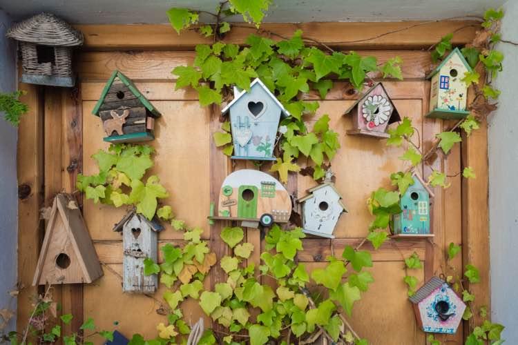 Vogelhuisjes aan een deur